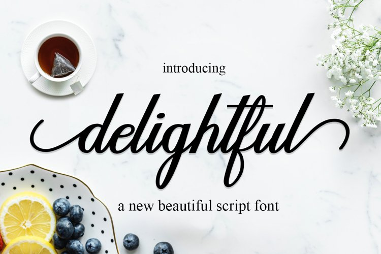 delightful script example image 1