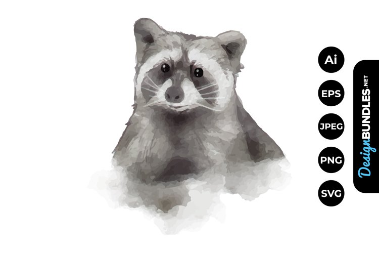 Racoon Watercolor example image 1