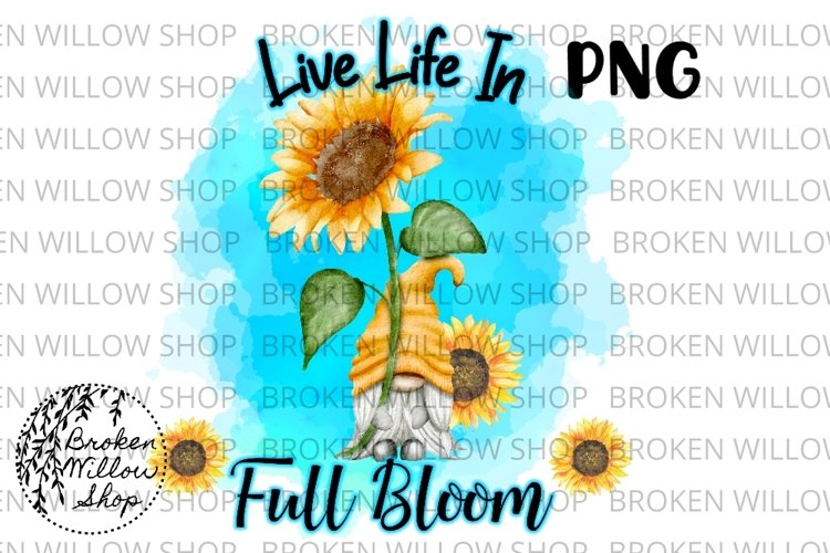 Live Life in Full Bloom Gnomes Sublimation PNG Instant Downl
