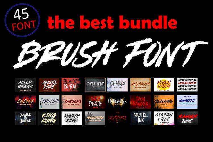 Brush Font Bundle - 45 Fonts example image 1