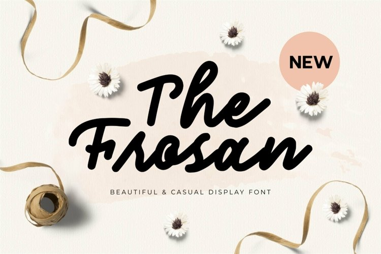 Web Font The Frosan Display Font example image 1