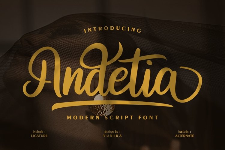 Andetia | Modern Script Font example image 1