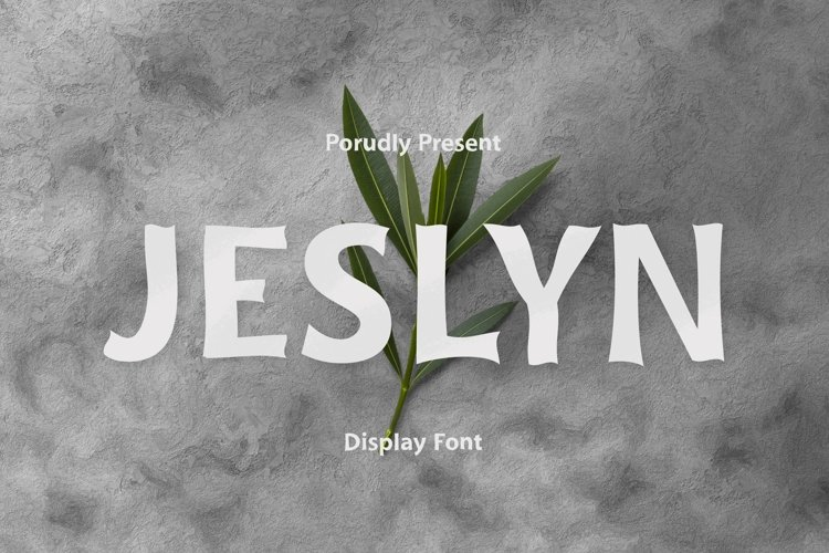 Web Font Jeslyn Font example image 1