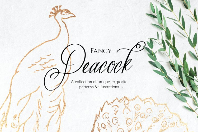 Fancy Peacock Collection example image 1