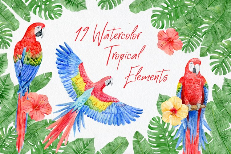 Watercolor scarlet macaw, tropical leaves and flowers