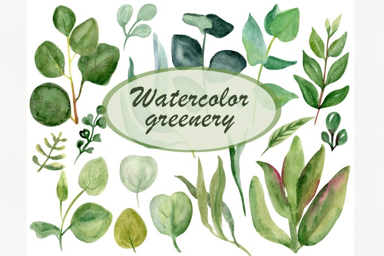 Watercolor floral greenery clipart, Leaf clip art