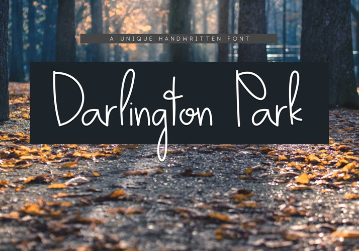 Darlington Park - Unique Handwritten Font example image 1