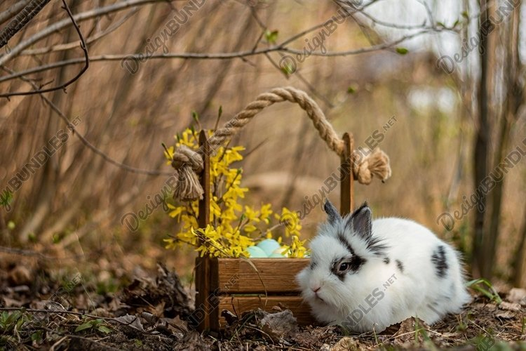 A small white easter rabbit with black ears and black spots