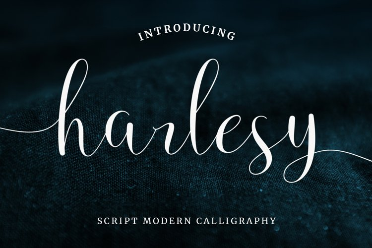 Harlesy Script example image 1