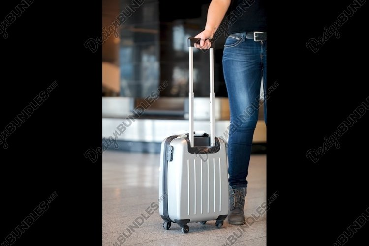 Collecting luggage at the airport example image 1