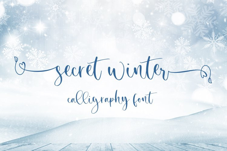 Secret Winter - Calligraphy Font example image 1