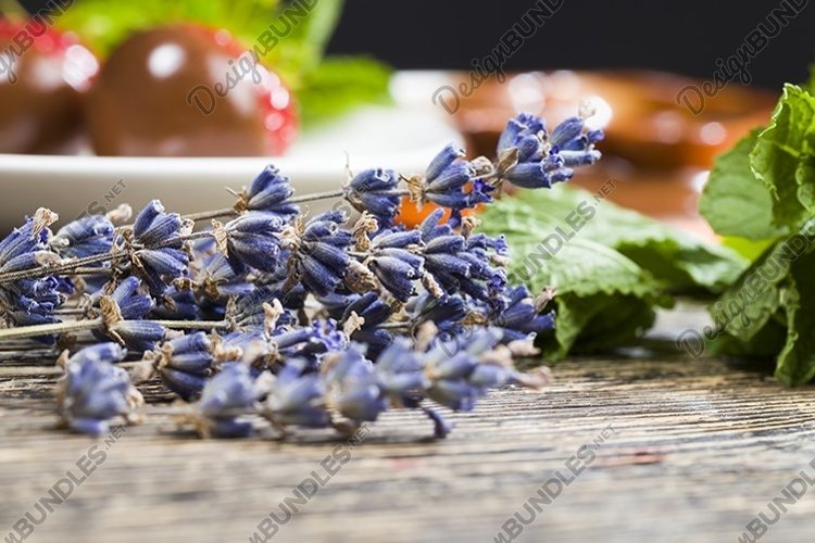 lavender, mint, strawberry and chocolate example image 1