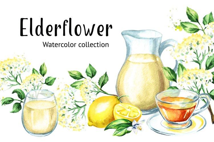 Elderflower. Watercolor collection example image 1