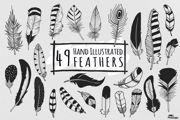 Hand Illustrated Feathers example image 1