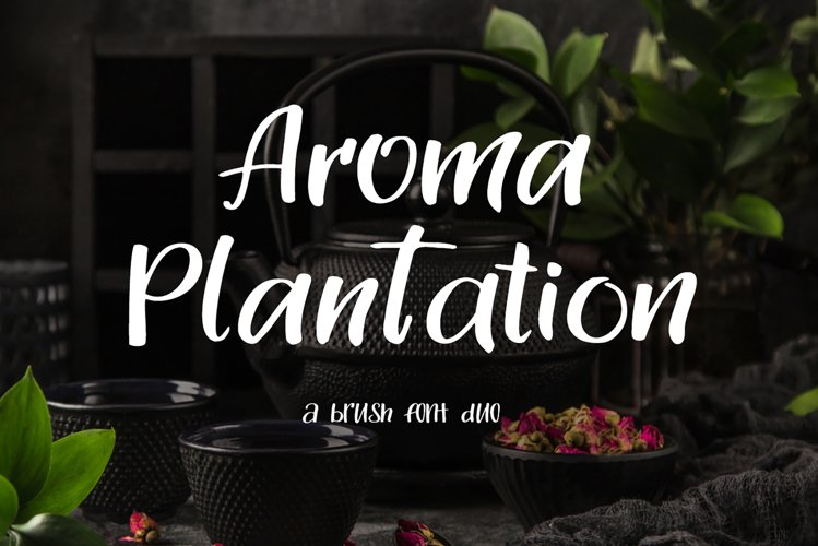 Aroma Plantation-font duo example image 1