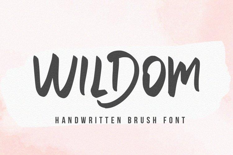 Willdom - Brush Font example image 1
