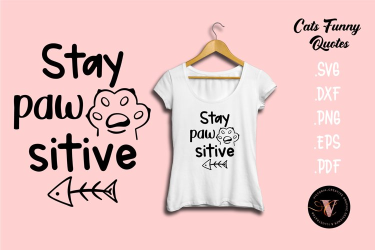 Stay Pawsitive SVG Cats funny motivation quotes