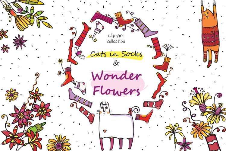 Cats in Socks & Wonder Flowers example image 1