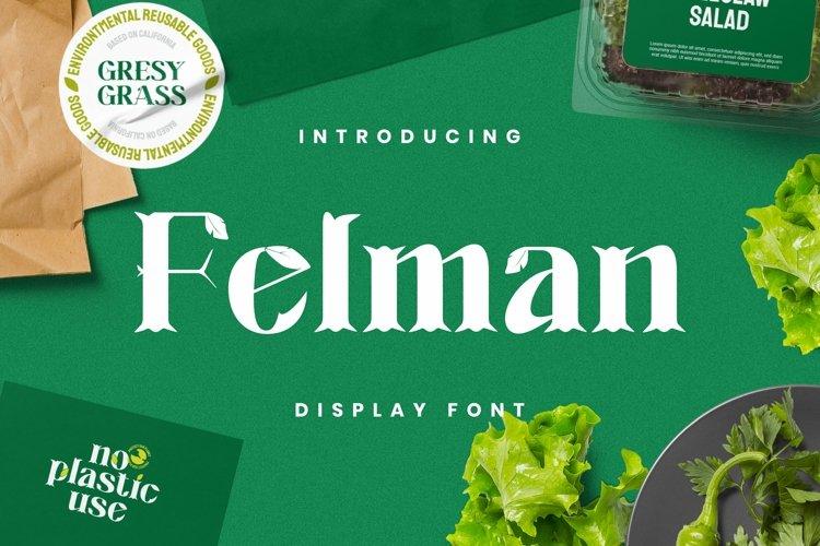 Web Font Felman Font
