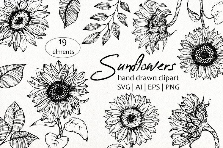 Sunflowers and leaves SVG, PNG. Hand drawn doodle flowers