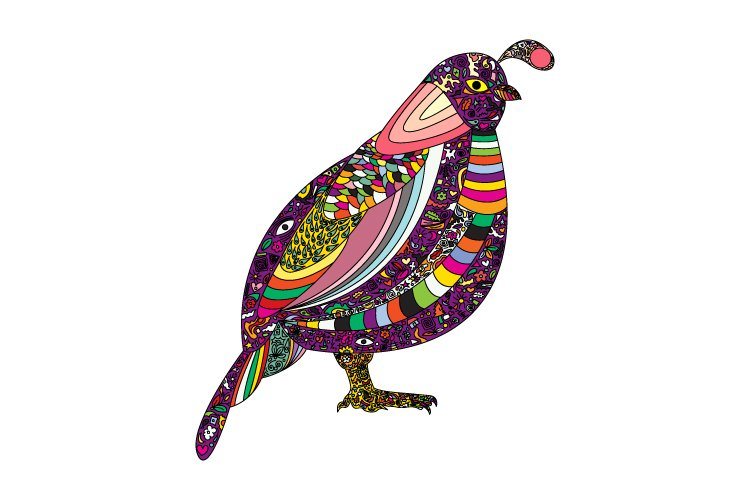 colorful bird, simple vector illustration example image 1
