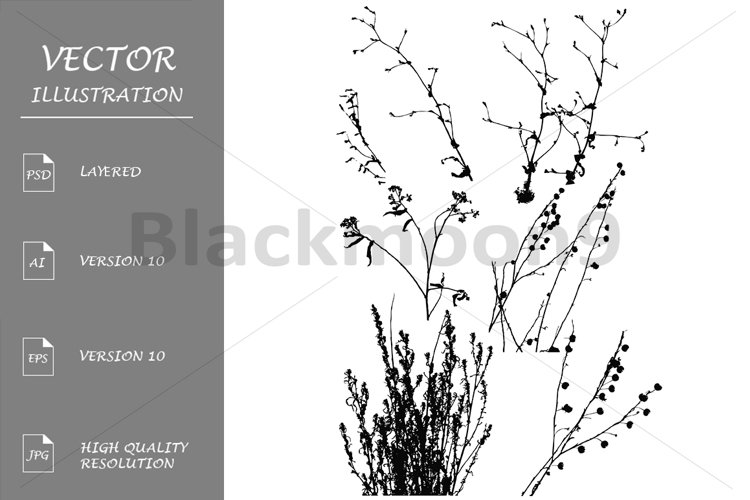 Silhouettes of Wild Plants example image 1