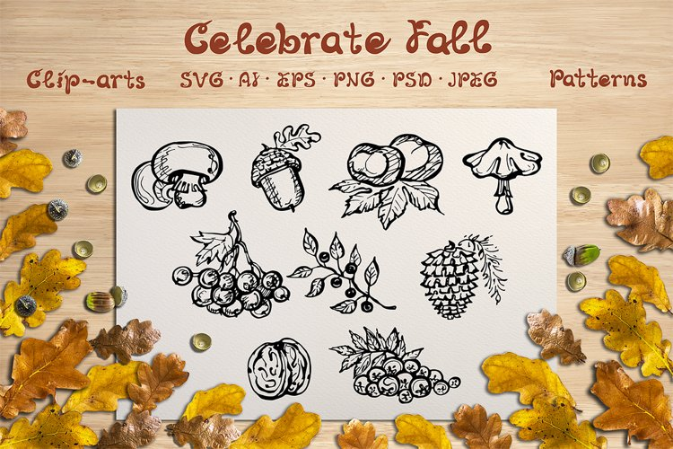 Fall elements, cards and patterns | SVG EPS AI PNG PSD JPEG example image 1