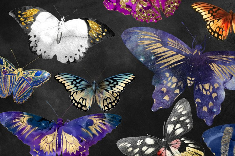 Painted Butterfly Clipart example 1