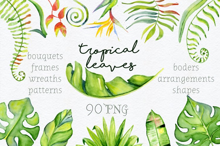 Tropical leaves Watercolor clipart example image 1