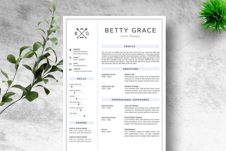 RESUME TEMPLATE CV PAGES example image 1