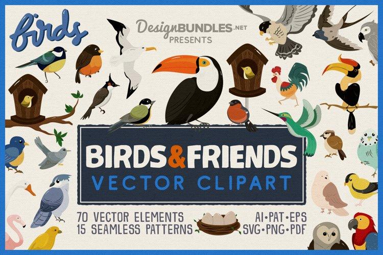 Birds Vector Clipart   Seamless Patterns