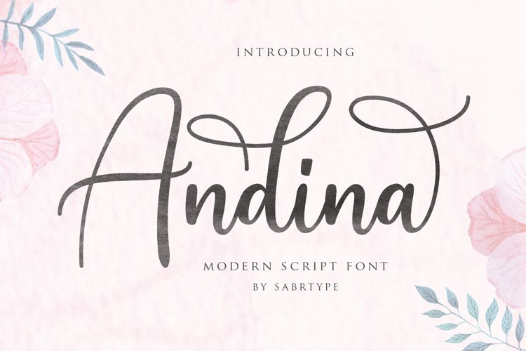 Andina - Modern Script Font example image 1