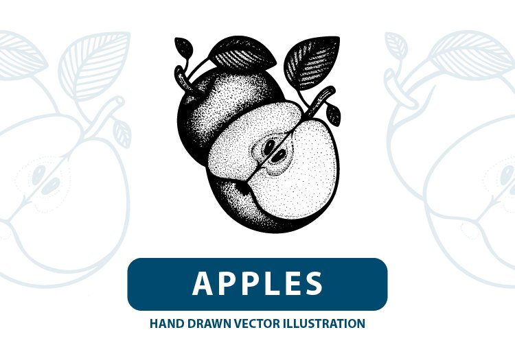 Apples hand drawn vector illustration. example image 1