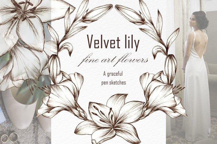 Graceful Lily, botanical Illustrations for wedding, vintage example image 1