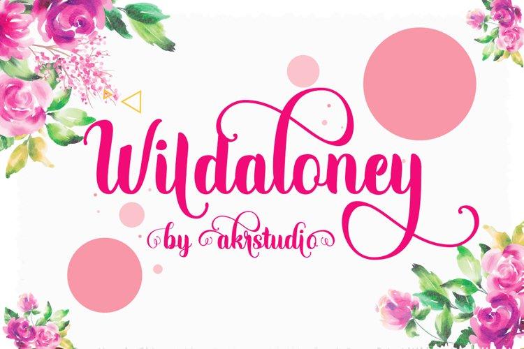Wildaloney example image 1
