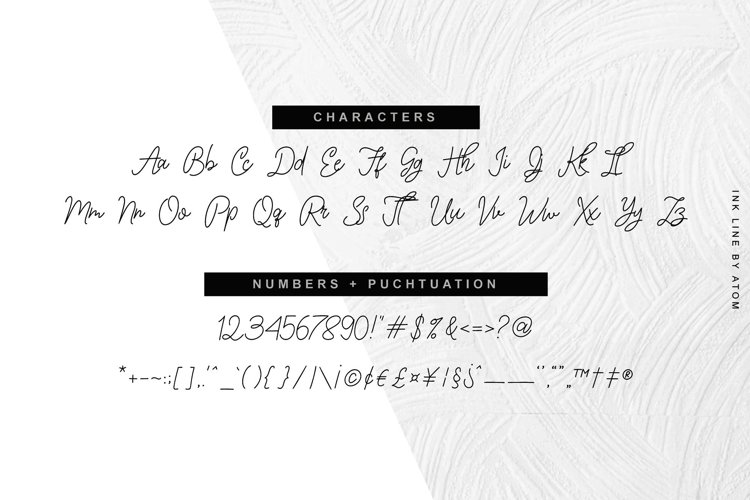 Ink Line   Modern Script Font example 2