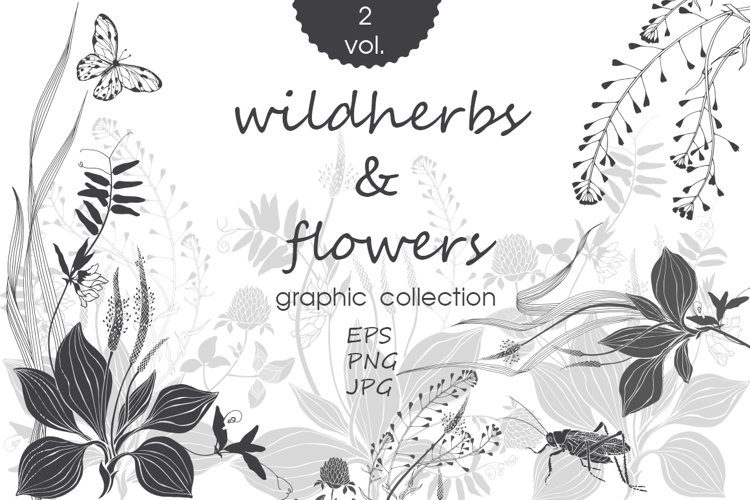 Wildherbs and flowers. Compositions. example image 1