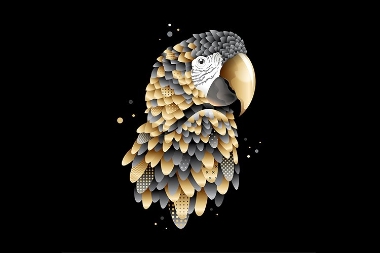 Modern graphic golden macaw illustration example image 1