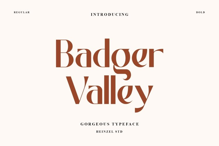 Badger Valley / Modern Typeface example image 1