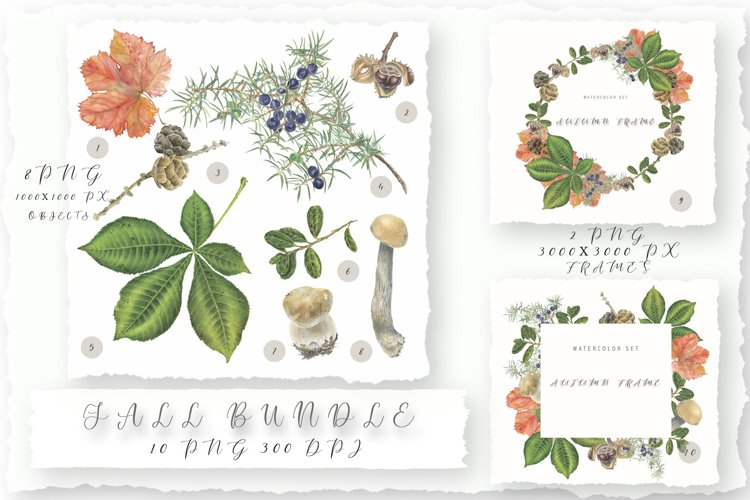 Fall Bundle. Watercolor collection of clipart and frames.