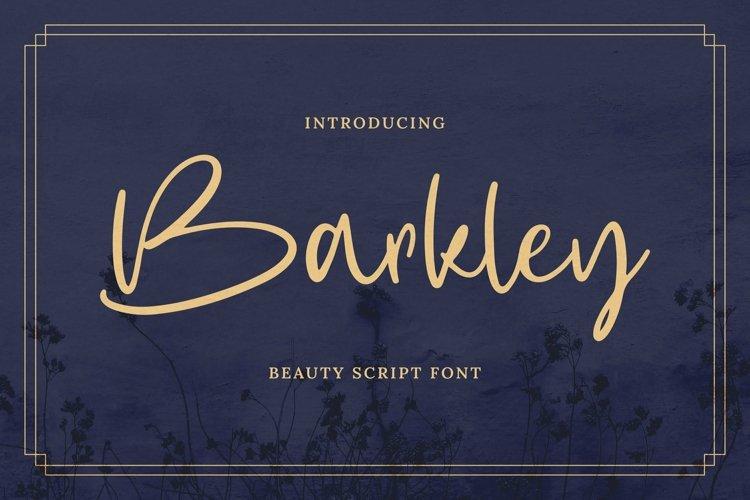 Web Font Barkley example image 1