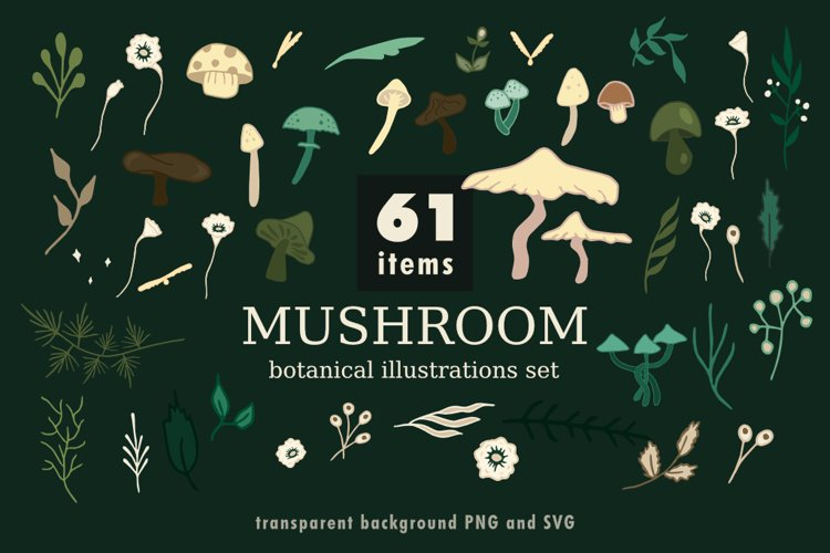 Mushroom botanical illustrations set.