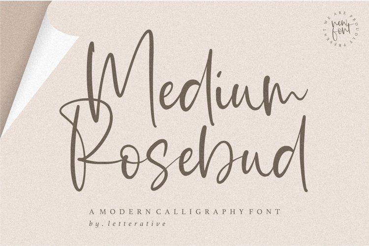 Medium Rosebud Modern Calligraphy Font example image 1