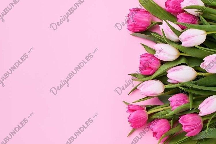 Bouquet of pink tulips on pink background. example image 1
