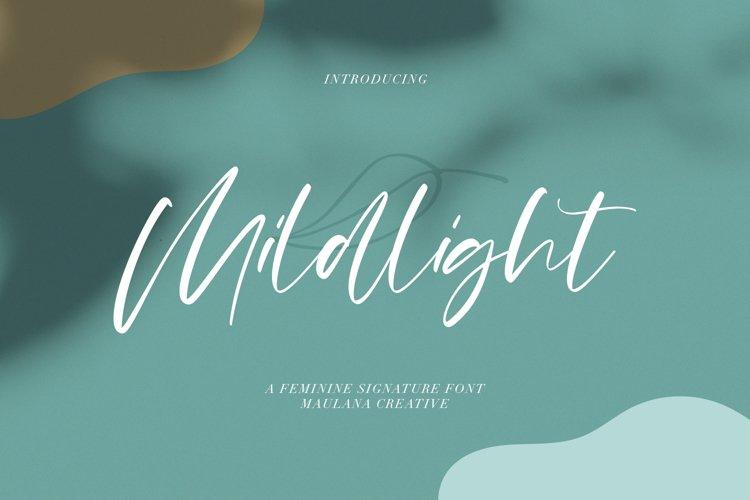 Mildlight Feminine Signature Font example image 1