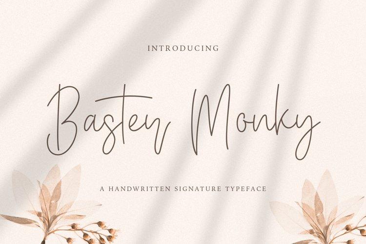 Baster Monky - Monoline Script Font example image 1