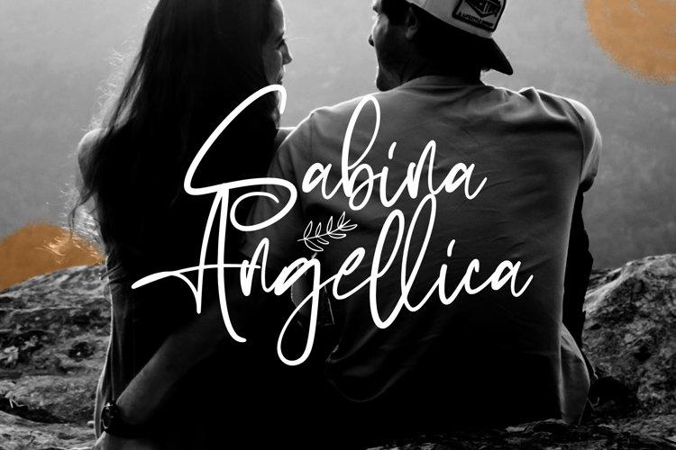Sabina Angellica - Modern Script Font example image 1