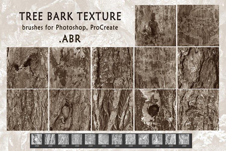 Tree bark texture. Brushes for Photoshop, ProCreate .ABR