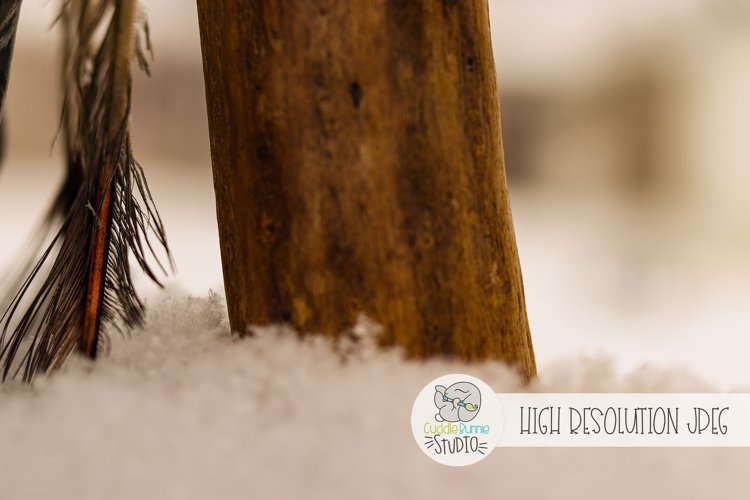 Feather and Wood In snow  Stock Photo  Background Photo example image 1