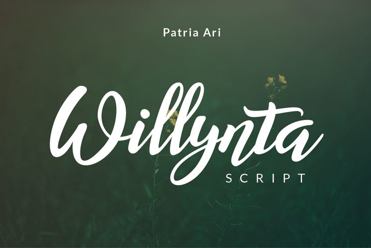 Willynta Script example image 1